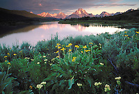 Sunrise at Oxbow Bend in Grand Teton National Park, Mount Moran reflecting in the still waters of the Snake River.
