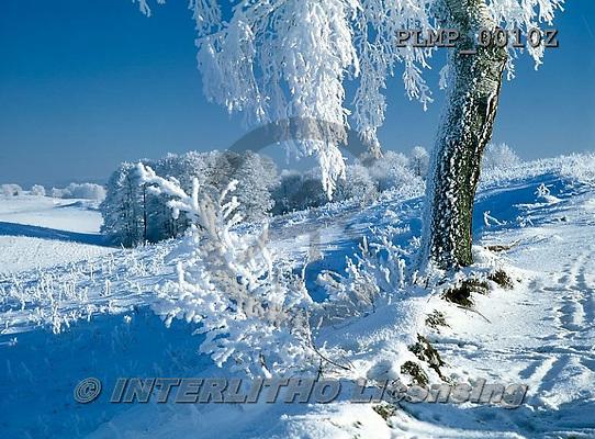 Marek, CHRISTMAS LANDSCAPES, WEIHNACHTEN WINTERLANDSCHAFTEN, NAVIDAD PAISAJES DE INVIERNO, photos+++++,PLMP0010Z,#xl#
