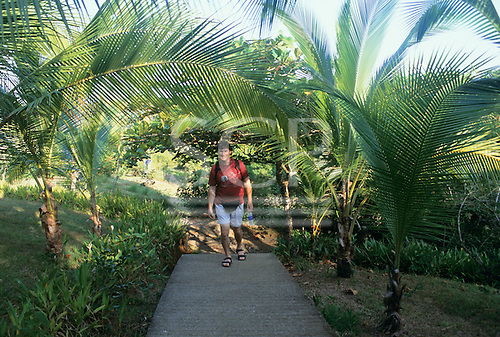 Osa Peninsula, Costa Rica. Marenco ecotourist lodge; the grounds with a tourist walking up the path.