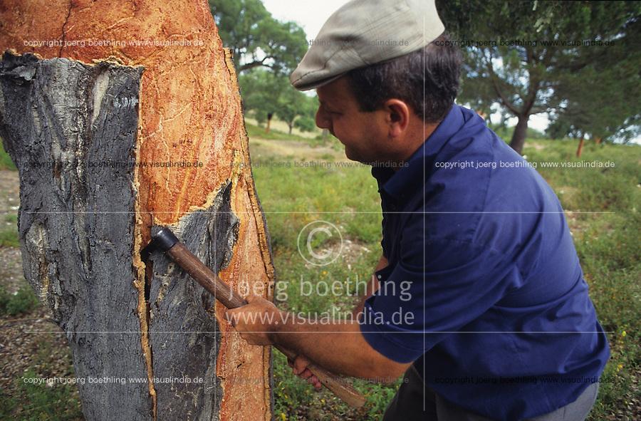 PORTUGAL, Alentejo, worker peel the bark of cork tree, every 7 years the bark of a tree can removed for production of cork stopper and flooring products / PORTUGAL, Alentejo, Landarbeiter bei Schaelung von Korkeichen, alle 7 Jahre kann die Rinde deer Korkeiche geschaelt werden, aus der Korkrinde werden Flaschenkorken und Fussbodenbelege hergestellt