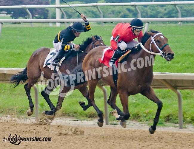 Long on Value winning at Delaware Park on 6/10/13