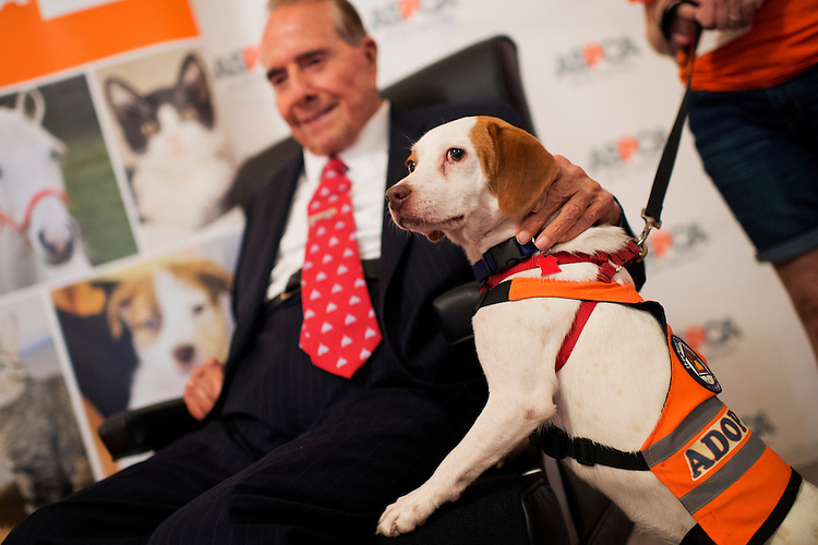 """UNITED STATES - JULY 30: Former Sen. Bob Dole, R-Kan., pets """"Fonzie"""" during the ASPCA's Fourth Annual Paws for Celebration pet adoption event in Cannon Building, July 30, 2015. (Photo By Tom Williams/CQ Roll Call)"""