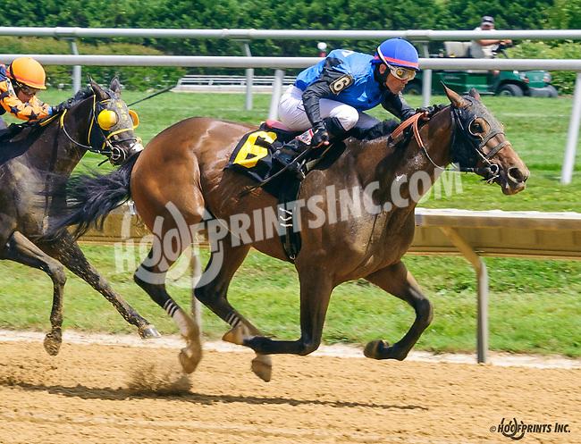 Beauziggity winning at Delaware Park on 7/2/16
