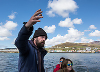 A tour guide tells his passengers about Dingle and Fungie the Dolphin.