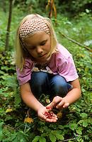 Wald-Erdbeere, Walderdbeere, Erdbeere, Mädchen erntet Früchte, Fragaria vesca, Wild Strawberry