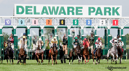 Ladida winning at Delaware Park on 7/11/13