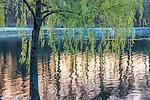 Sunrise at Jamaica Pond in the Jamaica Plain neighborhood, Boston, Massachusetts, USA