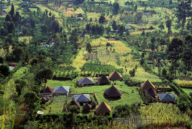 Agricultural smallholdings, known locally as shambas..