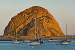 Morro Bay, Cambria, & San Simeon