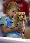 Ayden Davern, 7, gives some race tips to her dog Peanut before the Weiner Dog Races at the Reno Rodeo in Reno, Nev., on Saturday, June 28, 2014.<br /> Photo by Cathleen Allison