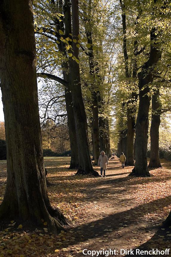 Deutschland, Hamburg, Lindenallee im Hirschpark in Blankenese