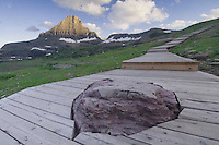 Mount Reynolds and Hidden Lake Nature Trail, Logan Pass, Glacier National Park, Montana, USA, July 2007