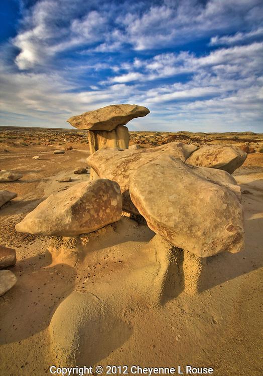 Bisti Shrooms - New Mexico