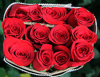BOGOTA-COLOMBIA-21-01-2013.Rosas,flores ,flowers ,roses Photo: VizzorImage/Felipe Caicedo.