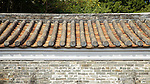A Section Of The Roof Of The Yamen Building, Kowloon Walled City.