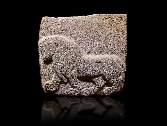 Aslantepe Hittite relief sculpted orthostat stone panel. Limestone, Aslantepe, Malatya, 1200-700 B.C. . Anatolian Civilisations Museum, Ankara, Turkey. Depiction of a horse walking. <br /> <br /> Against a black background.