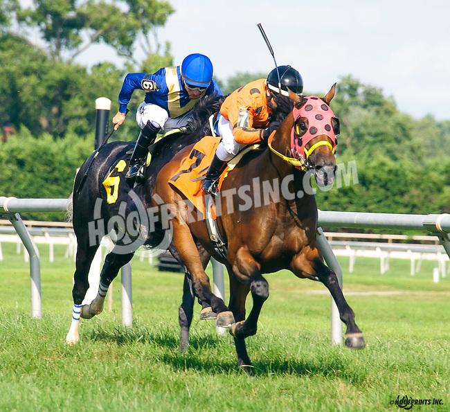 Wild Woo Woo winning at Delaware Park on 8/10/16