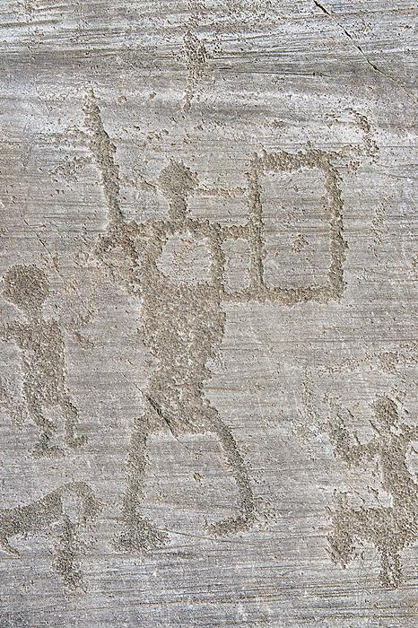 Petroglyph, rock carving, of a bird by the ancient Camunni people in the iron age between 1000-1200 BC, Rock no 1, Rock no 6, Foppi di Nadro, Riserva Naturale Incisioni Rupestri di Ceto, Cimbergo e Paspardo, Capo di Ponti, Valcamonica (Val Camonica), Lombardy plain, Italy