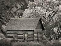 Fruita Schoolhouse. and cottonwood trees. Capitol Reef National Park, Utah