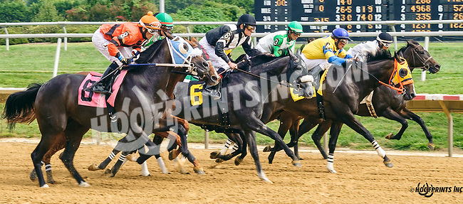 Shoppingforsilver winning at Delaware Park on 9/3/16