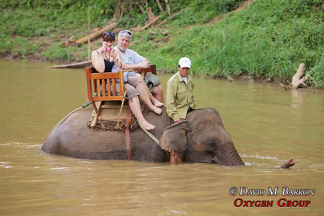 Group Riding Elephants In River