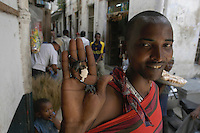 Maasai craftsman Laiza shows off the results of his craftsmanship in front of his stand of traditional jewelry on Gizenga Street in Stone Town, Zanzibar. (Rick D'Elia) Jan 2, 2003.<br />