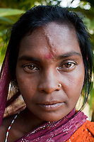 Sundarbans Tiger Widows
