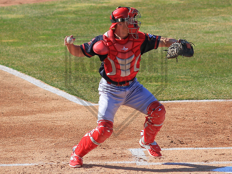 APPLETON - April 2015: catcher Steve Bean (8) of the Peoria Chiefs during a game against the Wisconsin Timber Rattlers on April 12th, 2015 at Fox Cities Stadium in Appleton, Wisconsin. (Photo Credit: Brad Krause)