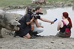 Foto: VidiPhoto<br /> <br /> HEDEL – Samen met de zwangere fokzeugen van de varkenshouder Andries van den Bogert uit het Gelderse Hedel in een modderbad. Voor de 25-jarige Nikki van Olst uit Dongen werd dat op de warme woensdag werkelijkheid. Als 'varkensvroedvrouw' wil ze de dieren beter leren kennen. Over enkele weken moet ze helpen bij het 'halen' van de biggen. Bovendien is de modder niet alleen verkoelend voor varkens (varkens kunnen niet zweten), maar ook voor mensen. Bij varkens zorgt de opgedroogde modder voor een 'harnas' tegen lastige insecten. Bij Nikki is het goed voor de huid, weet ze. Biologisch varkenshouder Van den Bogert heeft 1600 varkens. Tachtig zeugen zijn op dit moment zwanger. Alle dieren kunnen naar buiten. Foto: Remke Polder van Polder Productions aan het werk voor Telegraaf TV.