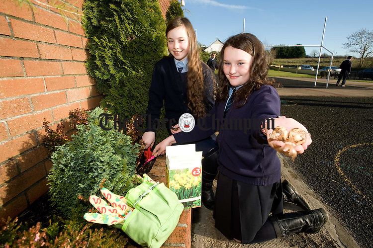Niamh Mc Mahon and Lauren Shannon do some gardening  at Cranny National School. Photograph by John Kelly.