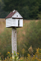 Birdhouse on a Post in Rural Illinois