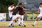 Palos Verdes, CA 01/22/13 - Oscar Chacon (Peninsula #8) and Michael Johnson  (West Torrance #8) in action during the West vs Peninsula boys varsity soccer game at Peninsula High School.