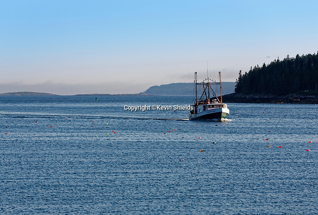 Fishing boat returning to Port Clyde, St. George, Maine, USA