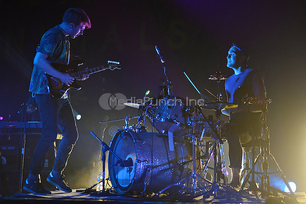 FORT LAUDERDALE FL - DECEMBER 08: Dave Bayley and Joe Seaward of Glass Animals perform at Revolution on December 8, 2015 in Fort Lauderdale, Florida. Credit: mpi04/MediaPunch
