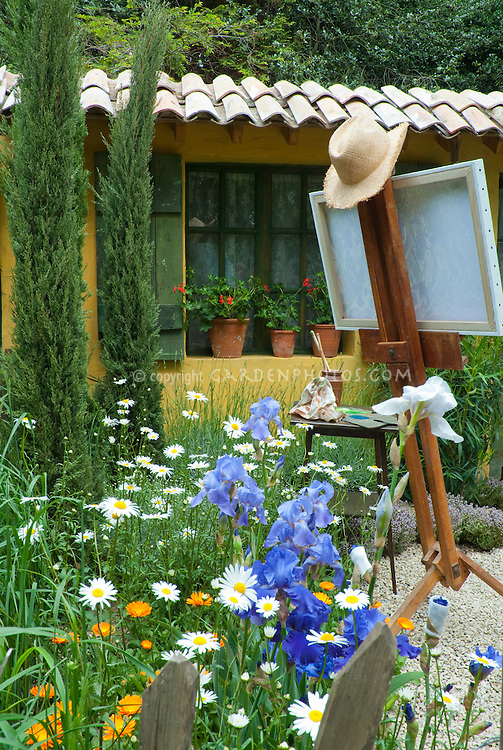 Artist's easel in the garden with painting, hat, blue irises, house with shutters on window and windowsill pot containers, shasta daisies, cypress trees, herbs thyme