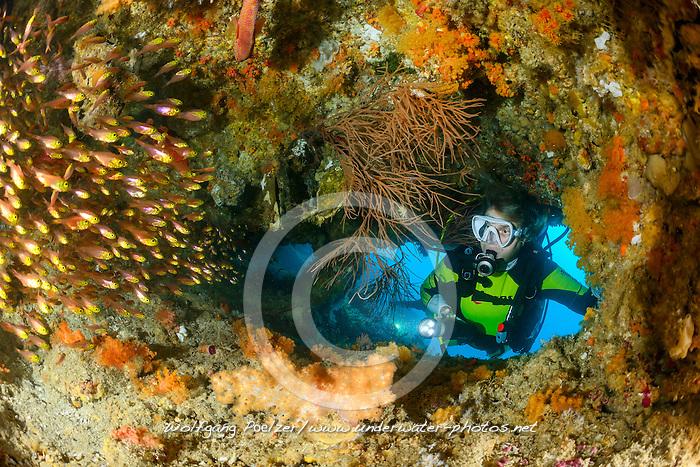 Parapriacanthus ransonneti,  Goldener Glasfisch und Taucher, Pigmy sweeper and suba diver, Malediven, Indischer Ozean, Baa Atoll, Maldives, Indian Ocean