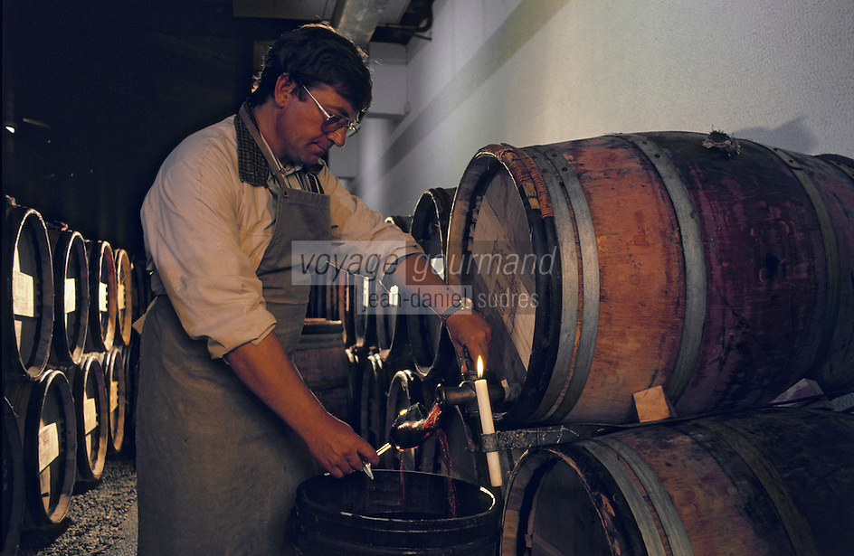 Europe/France/Aquitaine/33/Gironde: Chateau Lascombes (AOC Margaux) - Soutirage