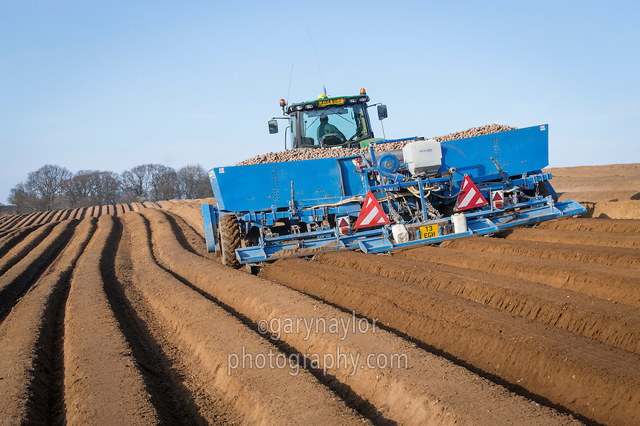 Planting potatoes with a six row Standen plnater - Norfolk, March