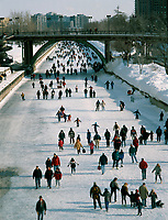 Ottawa (ON) CANADA - File Photo - .Ice skating on the Rideau Canal in the winter...photo by Pierre Roussel - Images Distribution