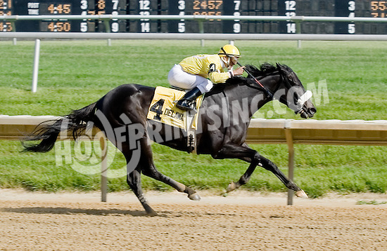 North Freeway winning The Winter Melody Stakes at Delaware Park on 5/12/12