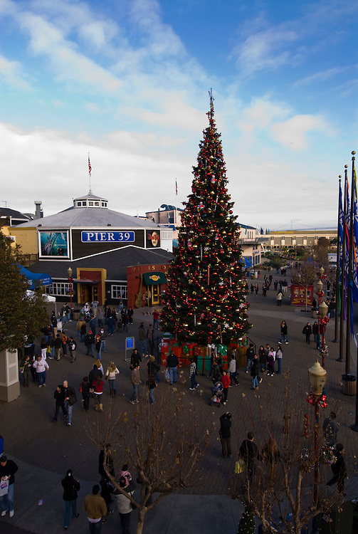 California: San Francisco Christmas celebration, Pier 39. Christmas tree and ornanents. Photo copyright Lee Foster.  Photo # 32-casanf76007