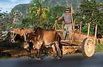 Farmer in Viñales Valley, Cuba