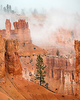 Bryce Canyon National Park, UT: Fog in the sandstone formations of Bryce Canyon