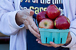 A woman hold a basket of apples.