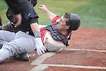 Baseball-39-Cleary 2013