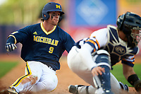 Michigan Wolverines shortstop Michael Brdar (9) slides home as catcher Nick Capitano (35) takes the throw during the second game of a doubleheader against the Canisius College Golden Griffins on February 20, 2016 at Tradition Field in St. Lucie, Florida.  Michigan defeated Canisius 3-0.  (Mike Janes/Four Seam Images)
