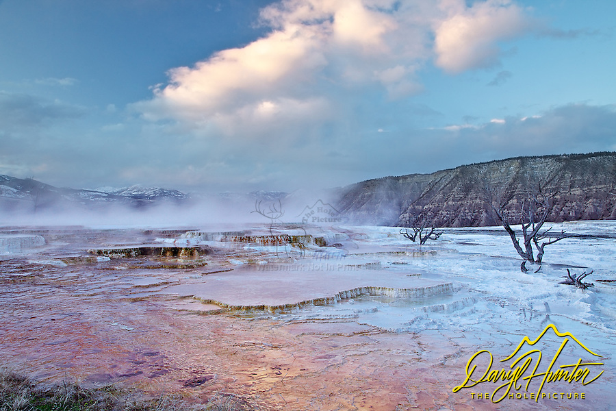 The surreal landscape of Mammoth Hot Spring terraces at sunset are something to see.