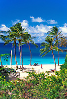 Beautiful Waimea Bay Beach Park with it's warm sands, blue waters and swaying palm trees. Located on the north shore of   Oahu.