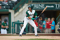 Tucupita Marcano (15) of the Fort Wayne TinCaps at bat against the Bowling Green Hot Rods at Parkview Field on August 20, 2019 in Fort Wayne, Indiana. The Hot Rods defeated the TinCaps 6-5. (Brian Westerholt/Four Seam Images)