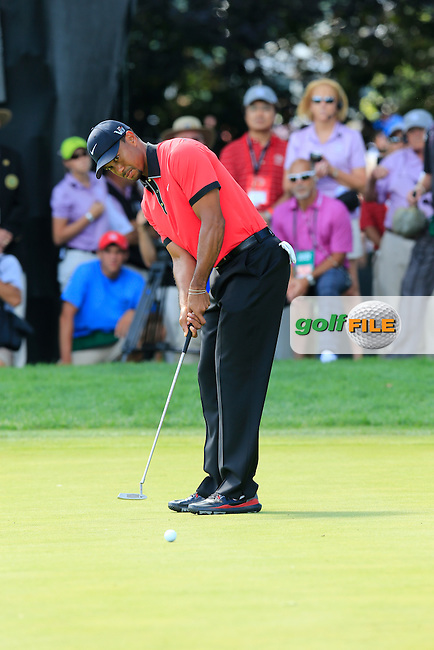 Tiger Woods (USA) putts on the 9th green during Sunday's Final Round of the 2013 Bridgestone Invitational WGC tournament held at the Firestone Country Club, Akron, Ohio. 4th August 2013.<br /> Picture: Eoin Clarke www.golffile.ie
